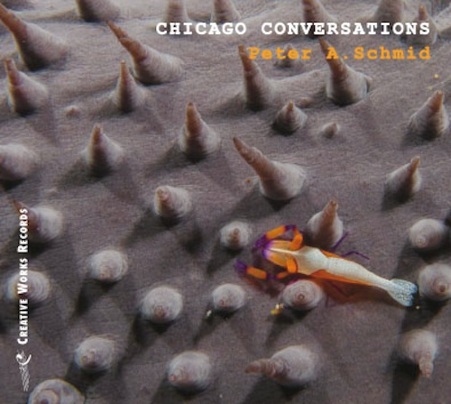 Peter A Schmid, Chicago Conversations, Michael Zerang, Frank Rosaly, Keefe Jackson, Waclaw Zimpel, Josh Berman, Nick Broste, Albert Wildeman, Creative Sources Records