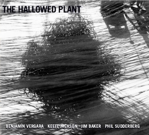 Benjamín Vergara, Keefe Jackson, Jim Baker, Phil Sudderberg, The Hallowed Plant, Relative Pitch Records