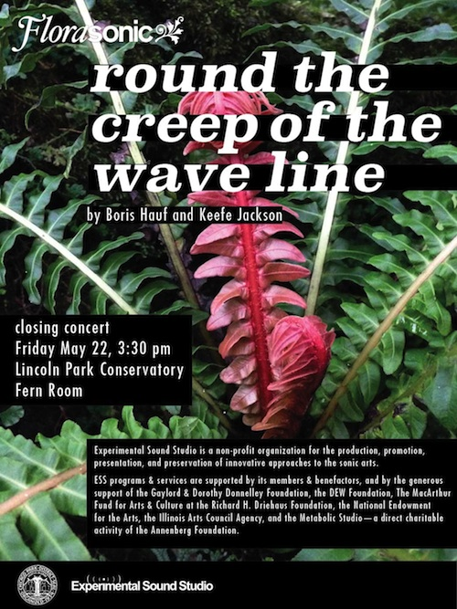 Round the creep of the wave line, Florasonic, Experimental Sound Studio, Lincoln Park Conservatory, Fern Room, Boris Hauf, Keefe Jackson